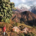 Auf dem Annapurna Sanctuary -Trek