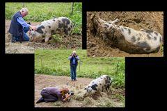 auf dem Arche Bauernhof #01