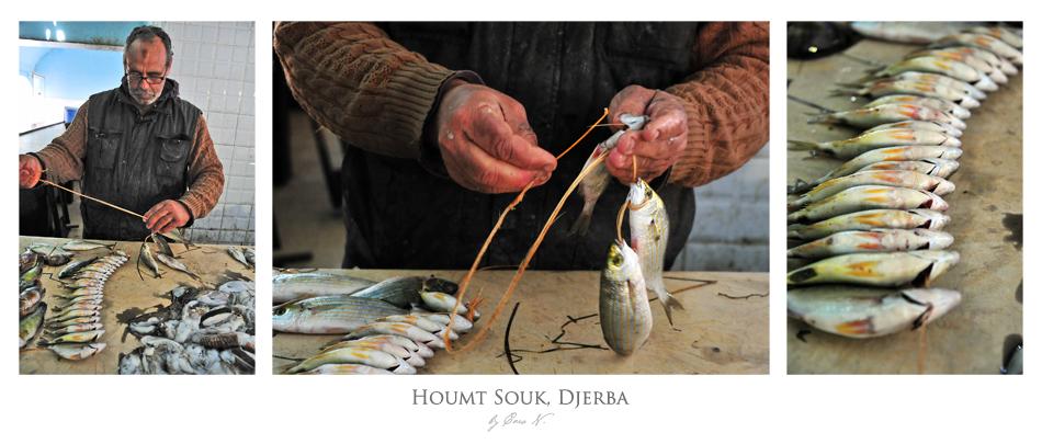 Auf dem Fischmarkt von Houmt Souk