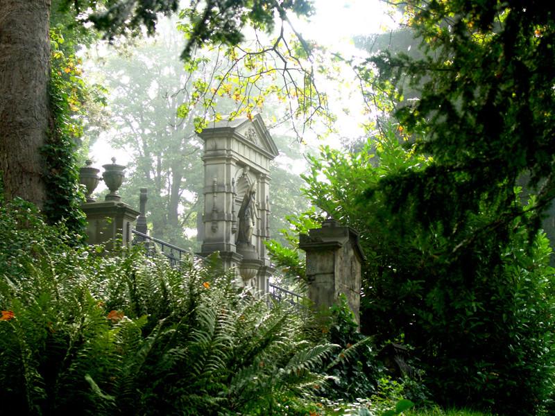 auf dem Friedhof 4
