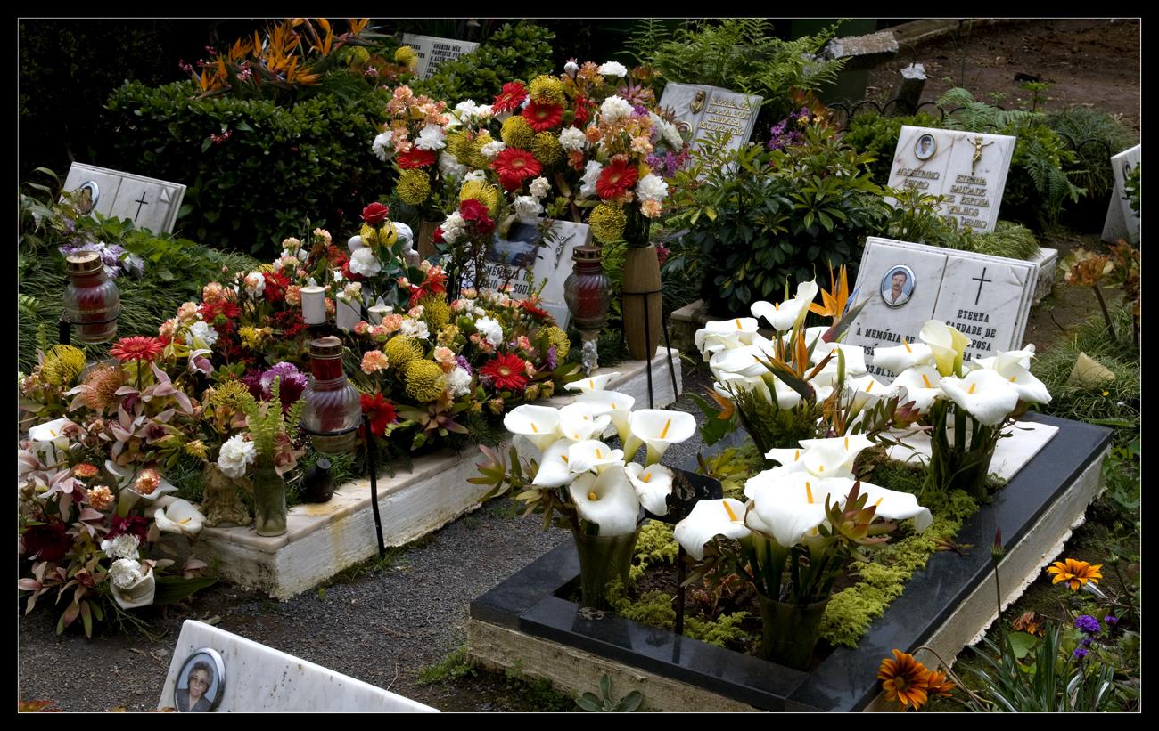 Auf dem Friedhof von Monte