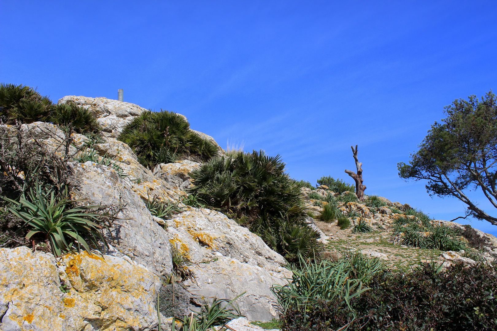 Auf dem Gipfel des Atalaya de Alcudia im Norden Mallorcas