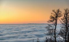 Auf dem Kandel und über den Wolken