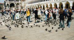 Auf dem Markusplatz in Venedig