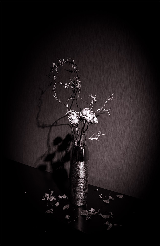 Auf dem Mond da blühen keine Rosen