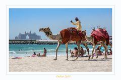 Auf dem Rücken der Kamele