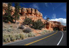 Auf dem Weg zum Bryce Canyon!