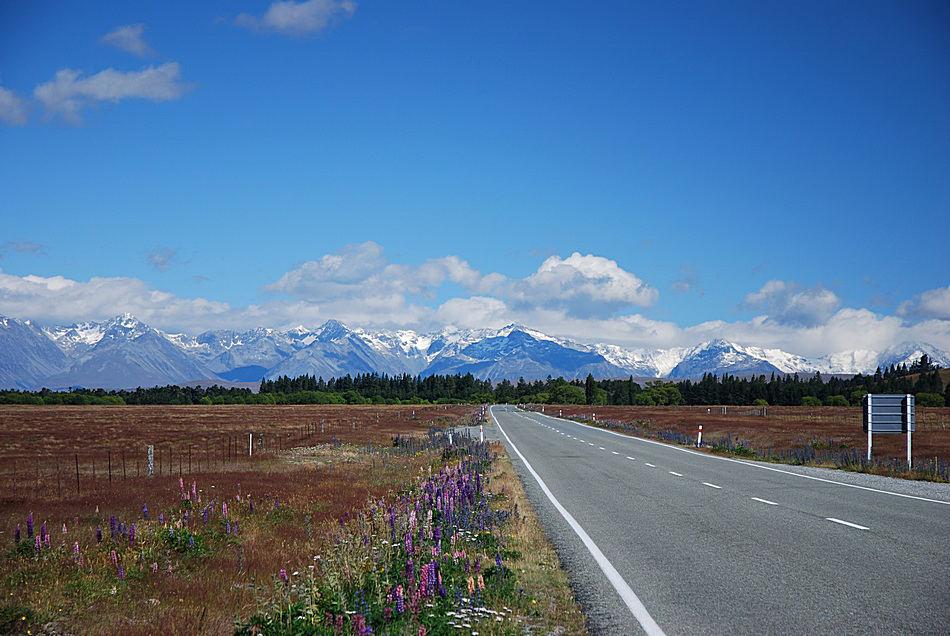 Auf dem Weg zum Lake Tekapo.....