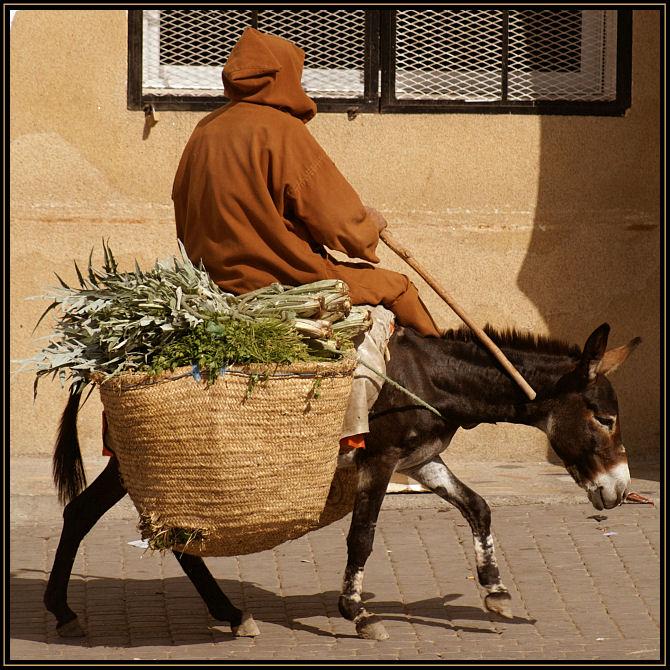Auf dem Weg zum Markt...
