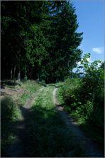Auf dem Weg zum Naturparkhaus