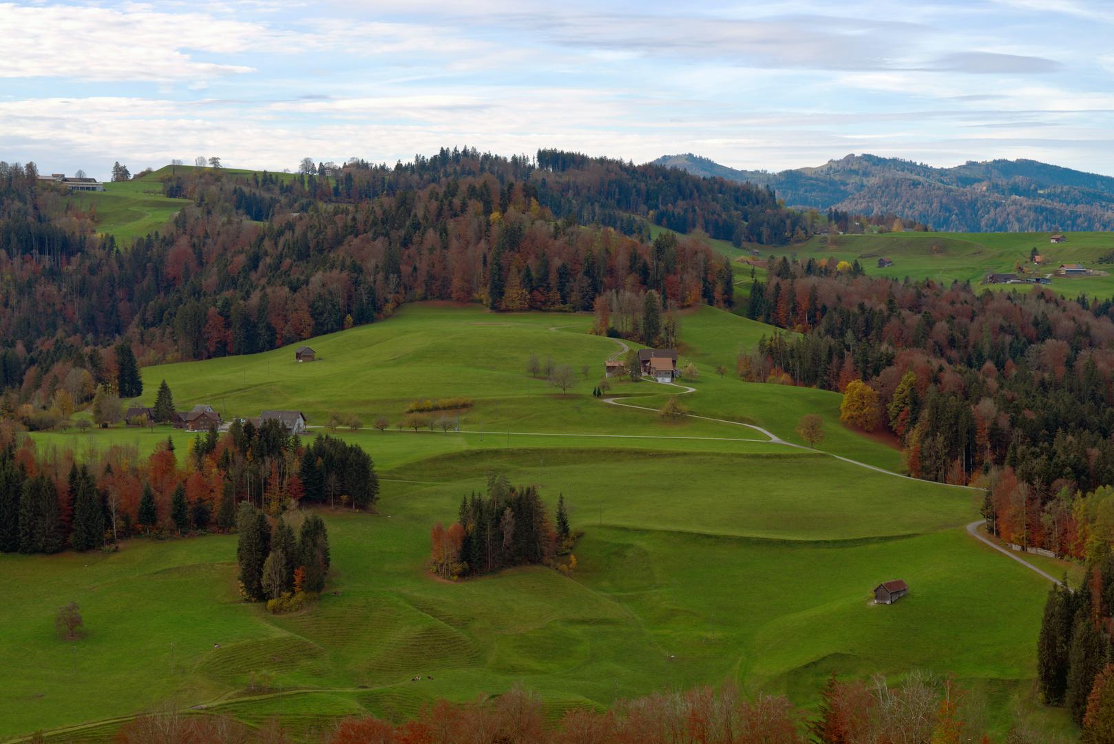 Auf dem Winzenberg