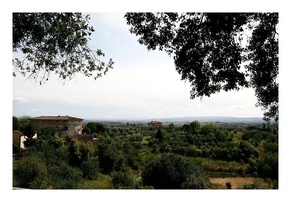 Auf den Hügeln der Toscana