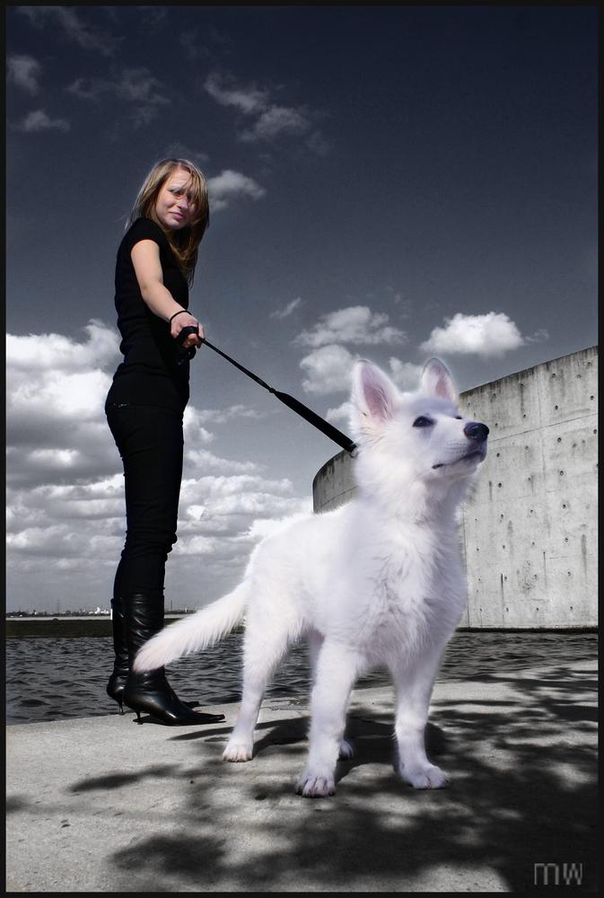 auf den Hund gekommen;-)