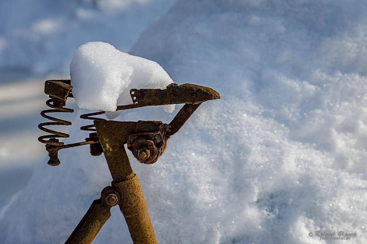 Auf Den Letzten Drücker Foto Bild Jahreszeiten Winter Alt