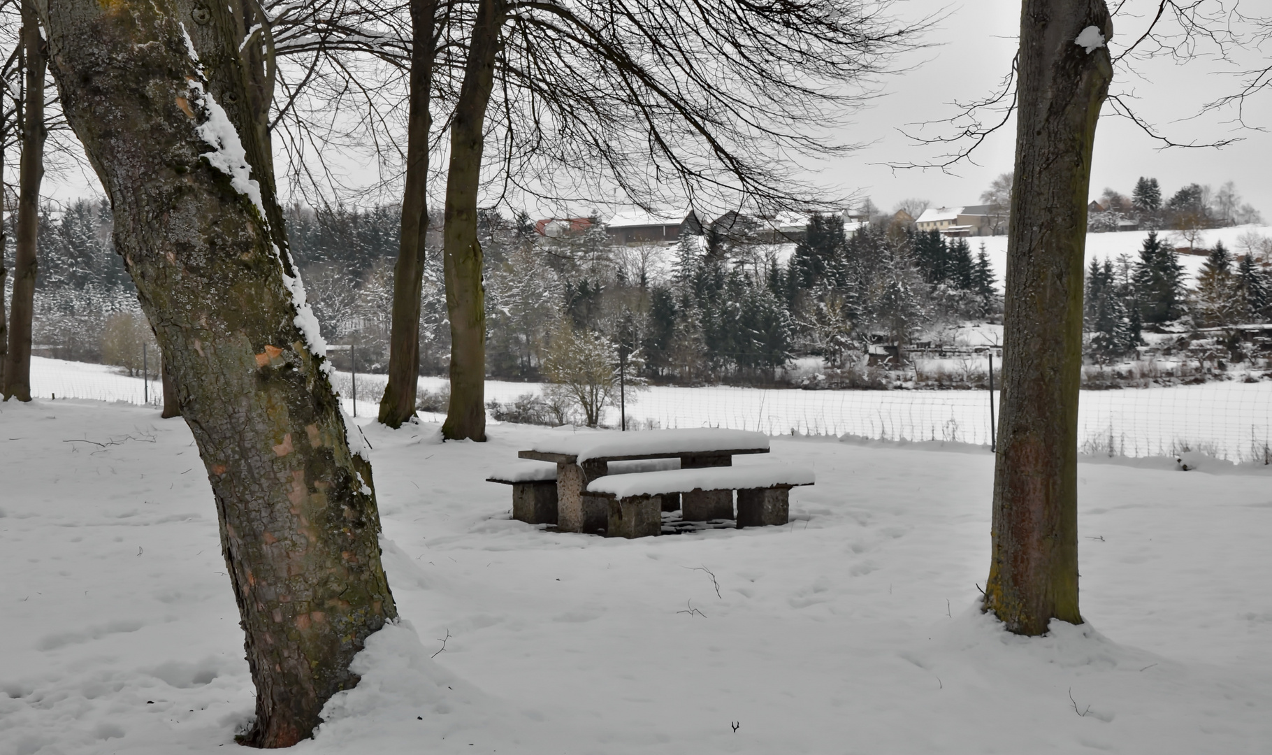 Auf den Weg in den Schwarzwald