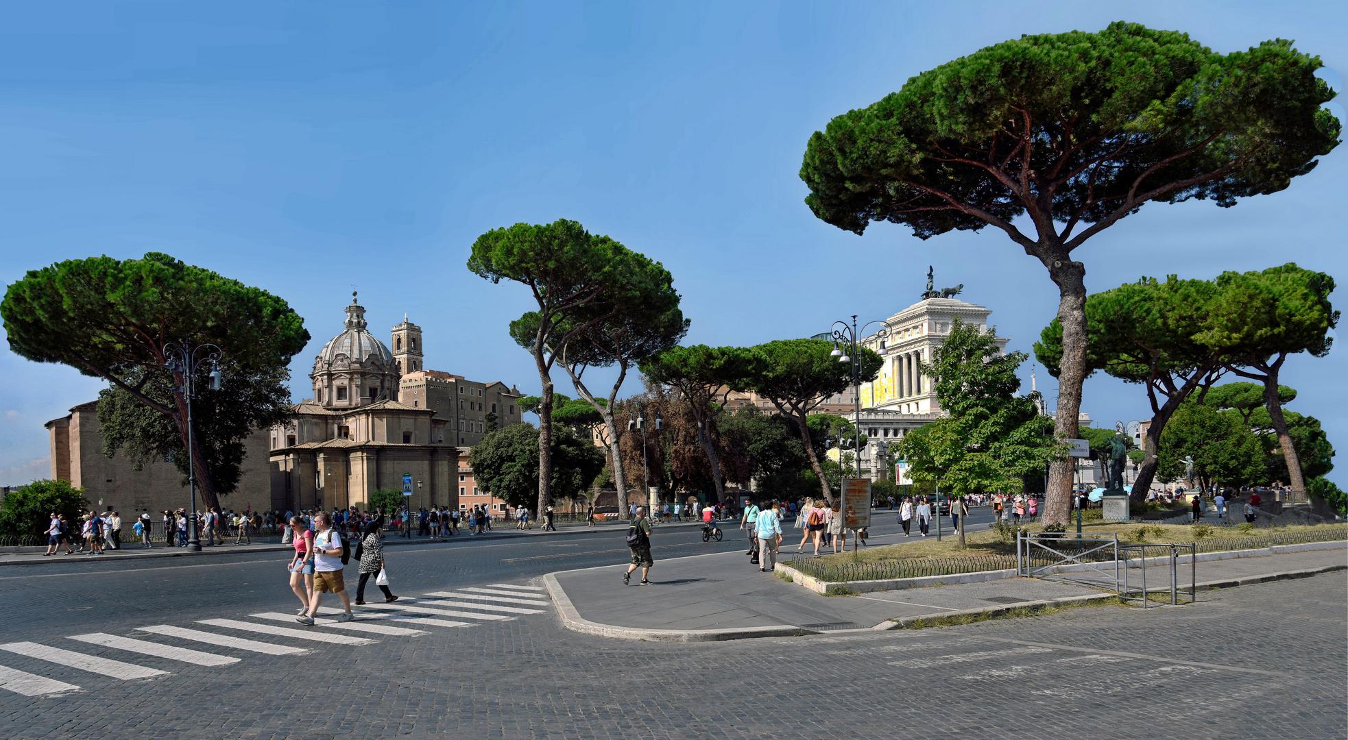 Auf den Weg zum Kolosseum und das Forum Romanum.