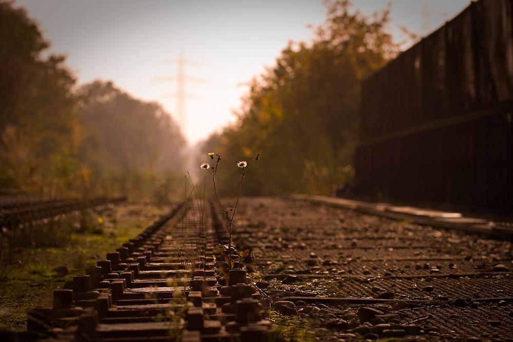 Auf der alten Eisenbahnbrücke