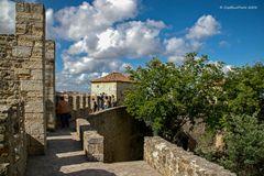 Auf der Burgmauer Castelo de Sao Jorge Lisboa