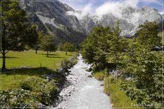 auf der Eng-Alm in Österreich