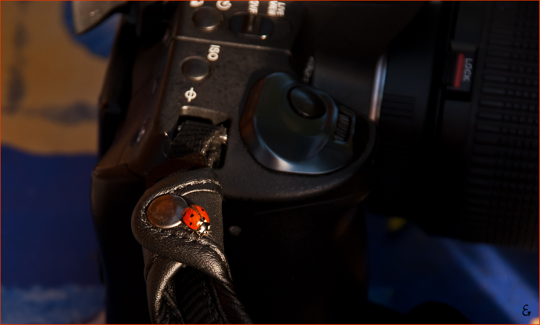 Auf der Kamera .....