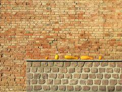 Auf der Mauer, auf der Mauer..