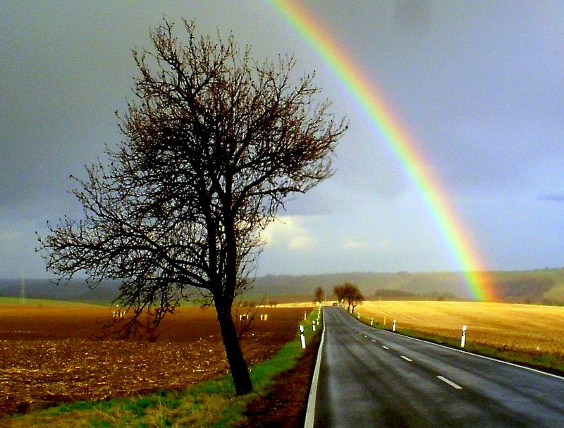 auf der Sonnenseite des Regenbogens :-)