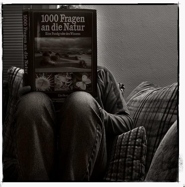 ...auf der suche nach 1000 antworten... :)