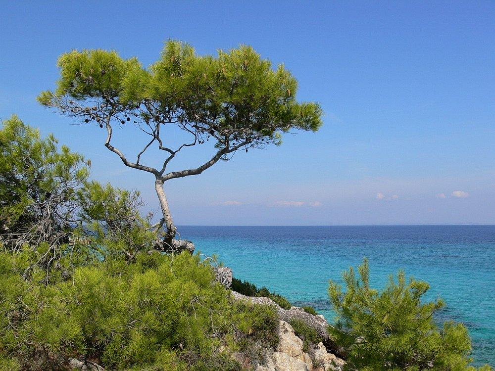 Auf der Suche nach dem perfekten Strand...
