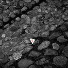Auf der Suche nach Liebe