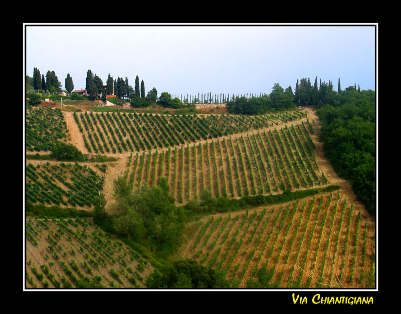 Auf der Via Chiantigiana 2 (gerahmt)