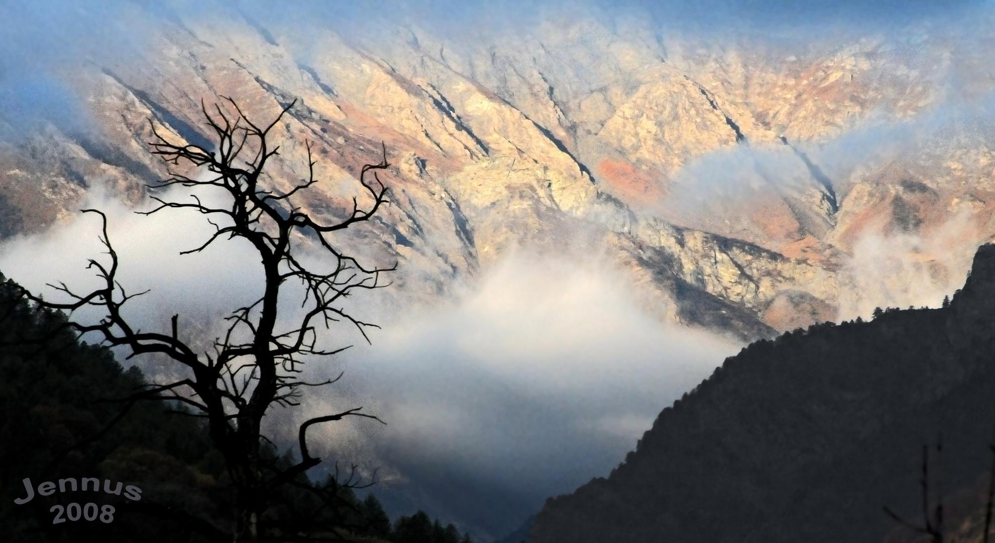 Auf die Berge will ich steigen, Wo die dunkeln Tannen ragen, Bäche rauschen, Vögel singen, Und die s