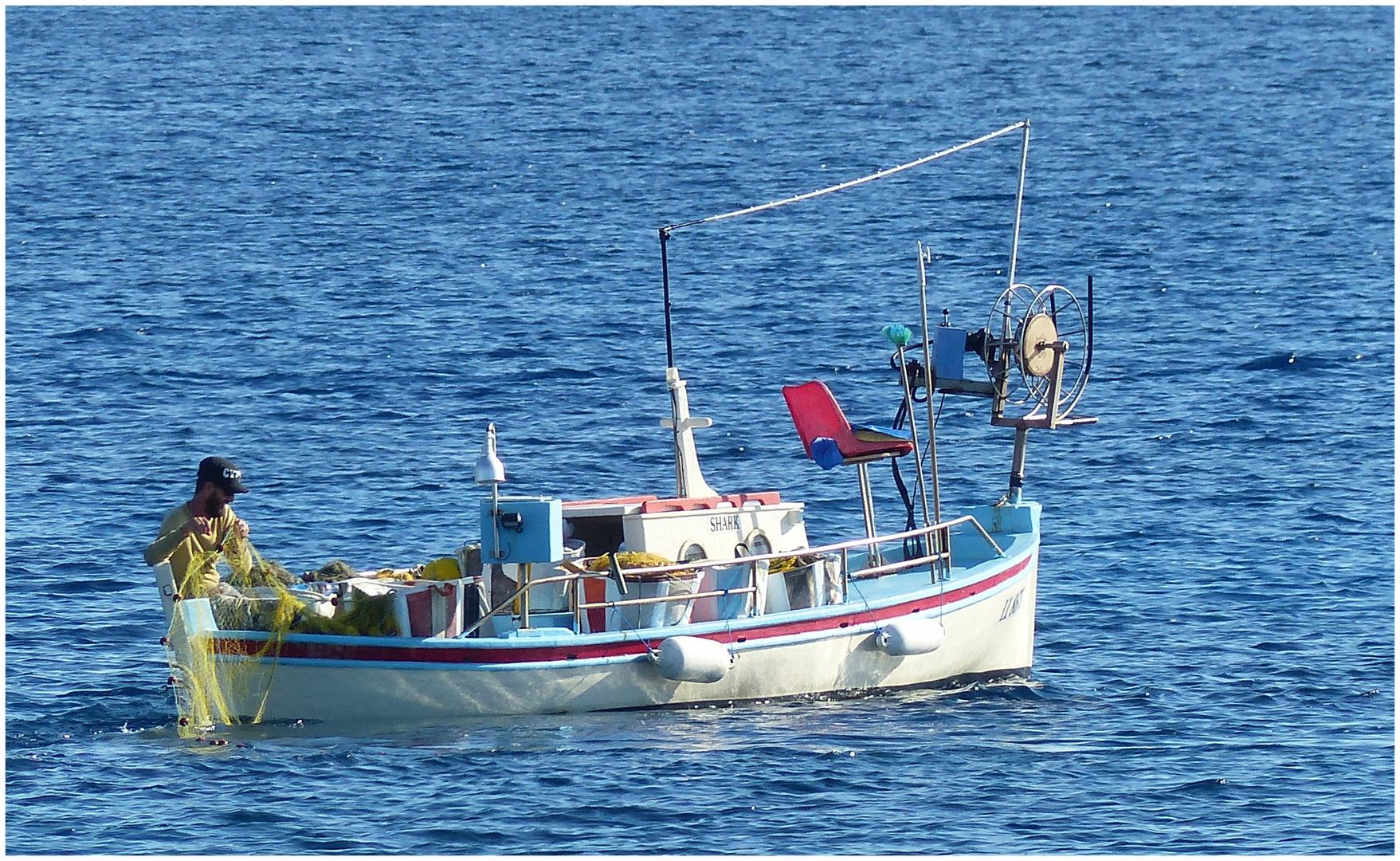 Auf Fischfang..