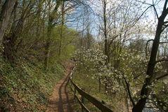 auf in den Frühling