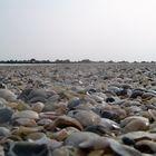 Auf Lido am Strand (Lido/Venedig)