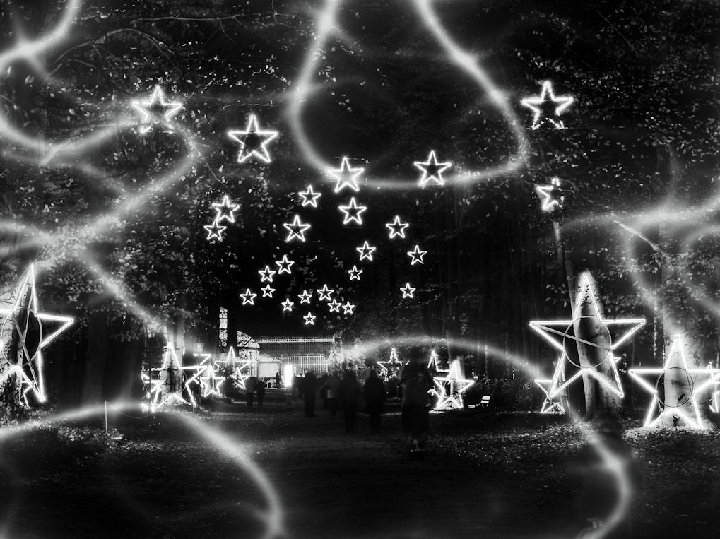 Auf zu den Sternen...