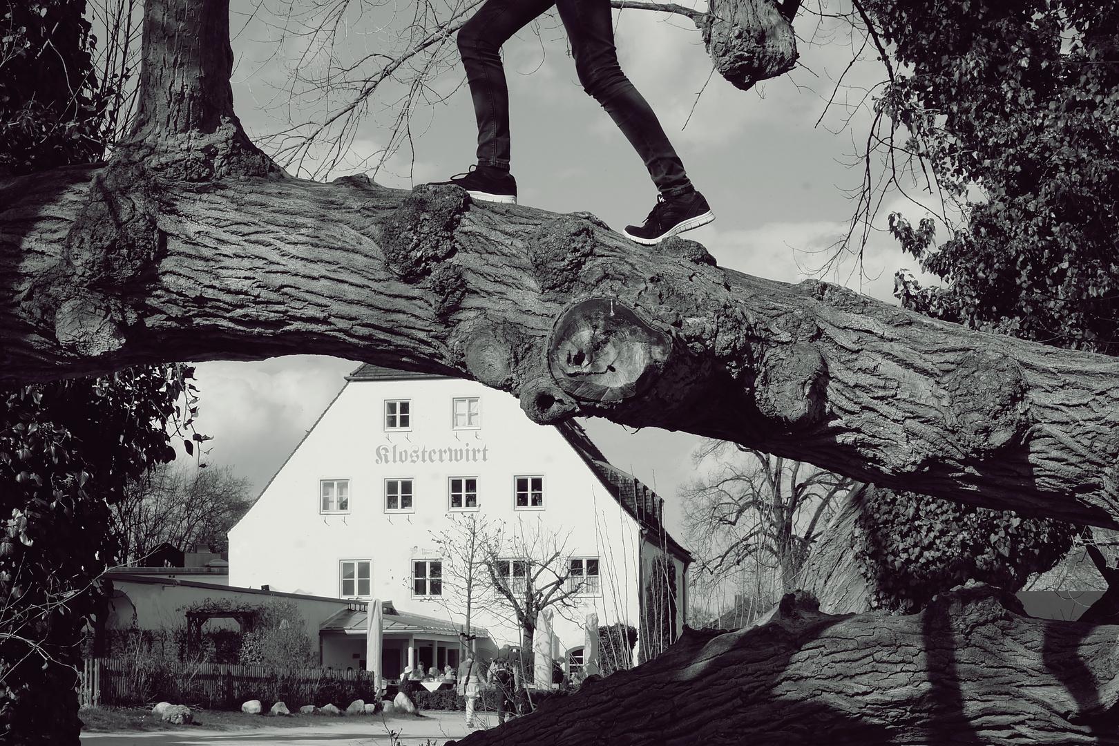 Auf zum Klosterwirt