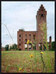 ...Auferstanden aus Ruinen...