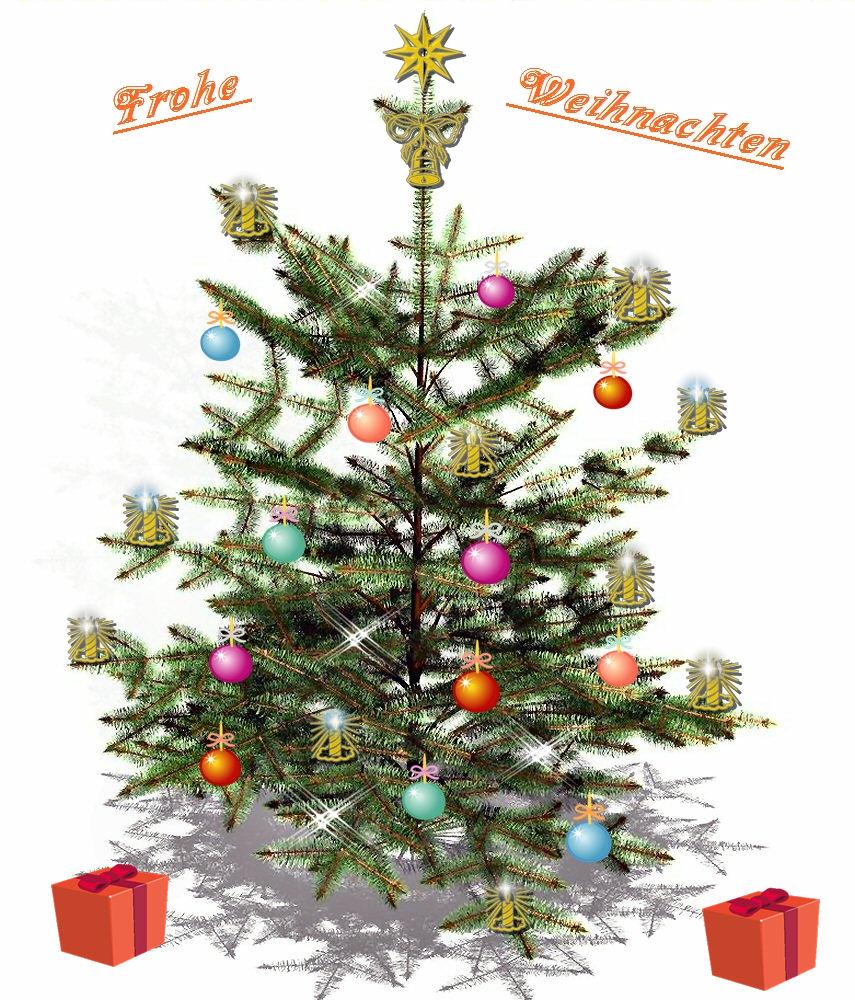 Aufruf Schmücke Den Weihnachtsbaum Foto Bild Pflanzen Pilze