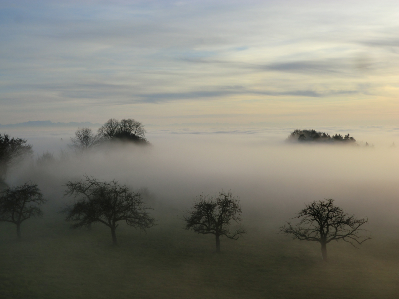 Aufziehender Nebel III