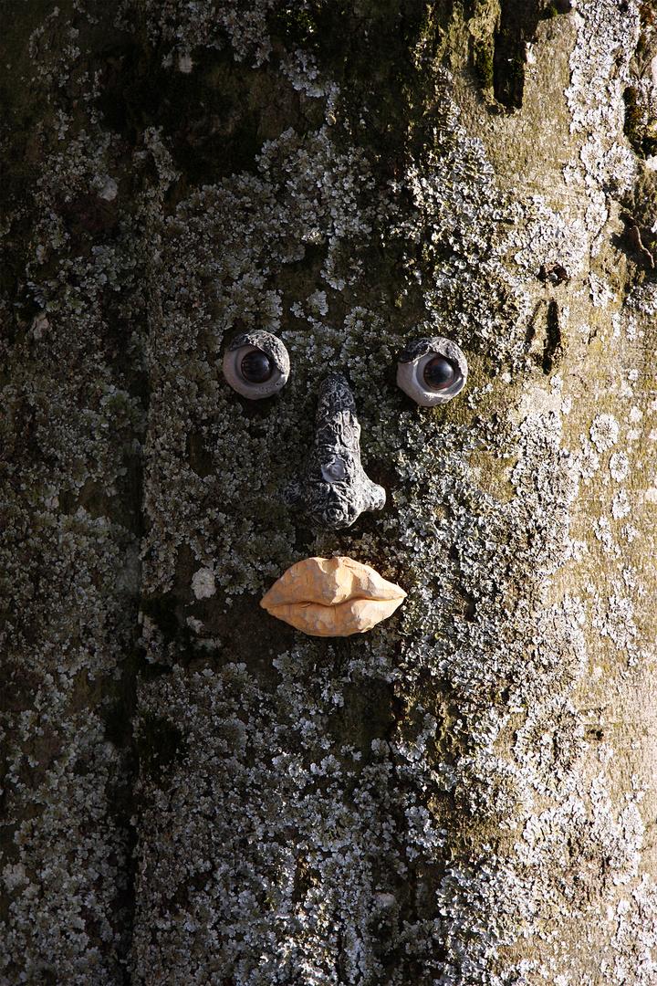 Auge in Auge mit der Natur