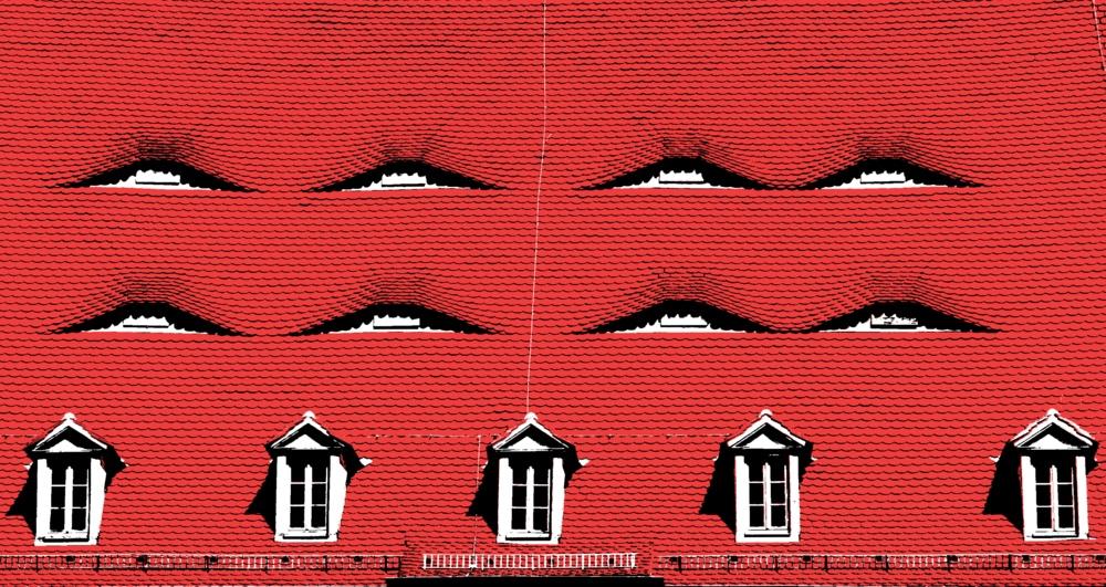 Augen eines Daches 2
