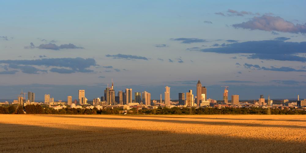 August-Skyline 1