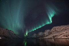 Aurora aus dem Fjord