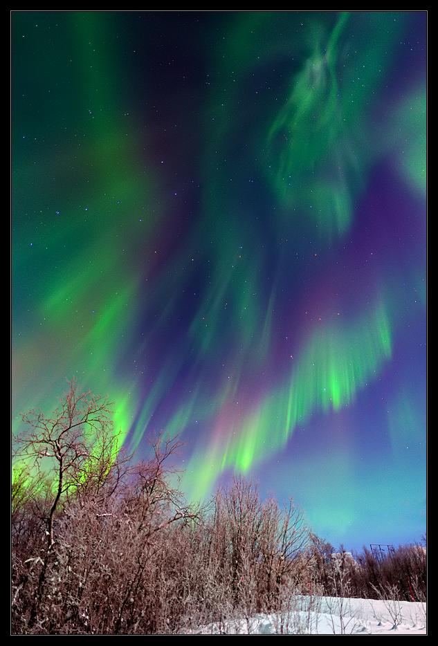 Aurora bei Abisko