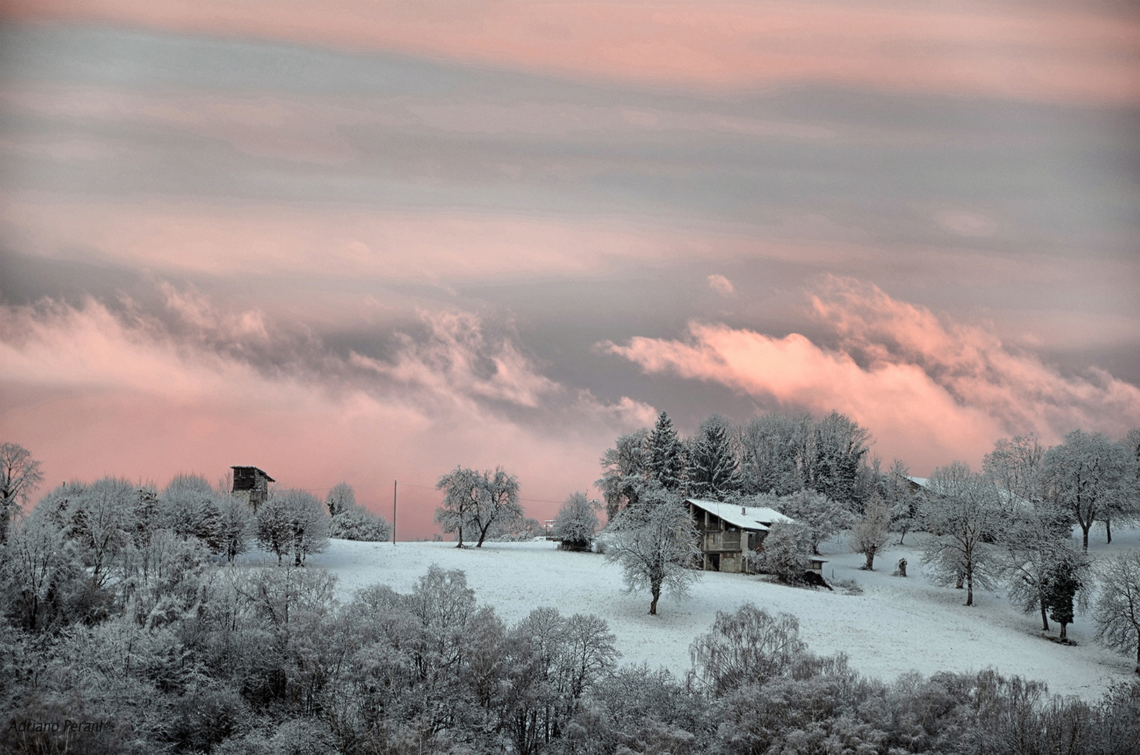 Aurora di rosa vestita