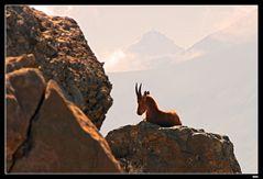 ...Aurore en haute montagne...