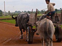 aus dem auto heraus, cambodia 2010