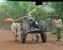 aus dem auto heraus II, cambodia 2010