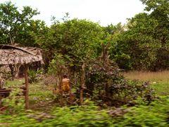 aus dem auto heraus V, cambodia 2010