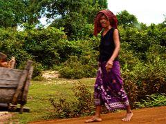 aus dem auto heraus VI, cambodia 2010